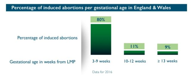 Abort-Report_England-Wales Percentage of induced abortions per gestational age
